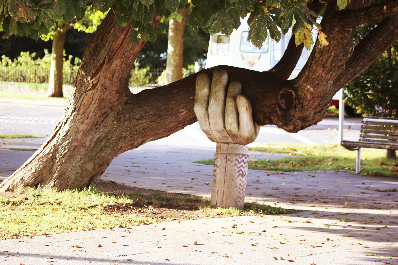 wspierająca ręka